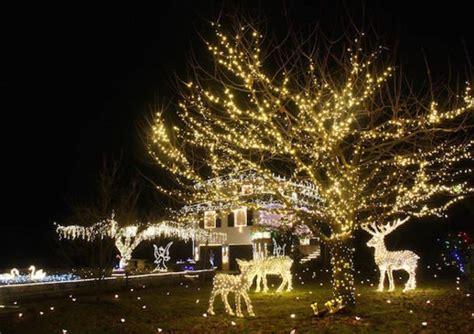 illuminazione natalizia le natalizie di leggiuno si faranno