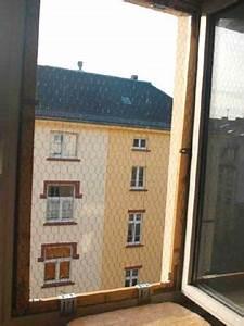 Balkonmöbel Selber Bauen : katzen balkon selber bauen at best office chairs home ~ A.2002-acura-tl-radio.info Haus und Dekorationen