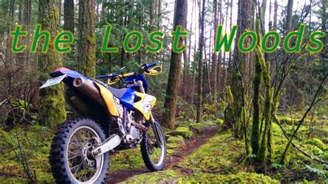 Lost Woods And Rugged Shorelines