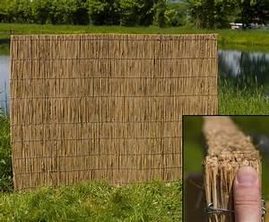 Bambus Für Balkon : schilfrohrplatten als sichtschutz 100x200cm kaufen ~ Eleganceandgraceweddings.com Haus und Dekorationen