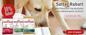 Hundezubehör Auf Rechnung Bestellen : hundezubeh r hundebedarf g nstig kaufen bei zooroyal ~ Themetempest.com Abrechnung