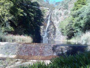 Hiking in Adelaide   5 top Walking Trails   Snowys Blog