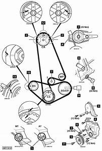 Wiring Diagram Database  2008 Honda Pilot Serpentine Belt