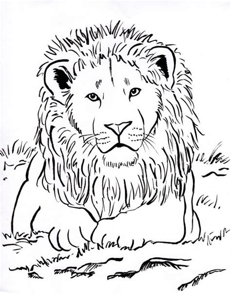 week  upside  lots  animal coloring pages lion