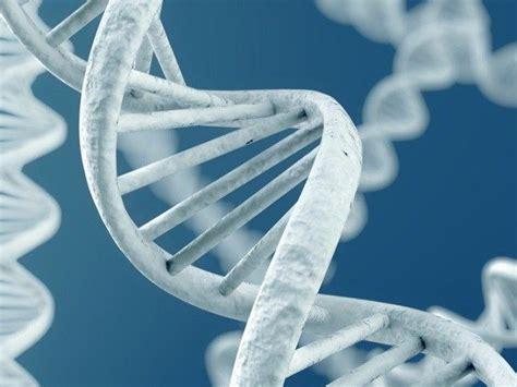 genome altering scientific breakthrough ignites ethics