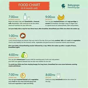 Pregnancy Food Chart Month By Month About Eating Time Table Of My 7 Month Old Girl