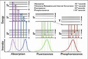 3  The Jablonski Diagram Summarizes Energy Level