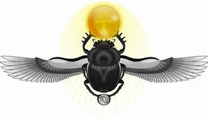 What Is The Meaning Of Scarab