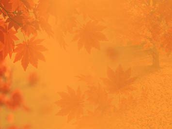 Fall Backgrounds Powerpoint fall autumn 01 powerpoint templates