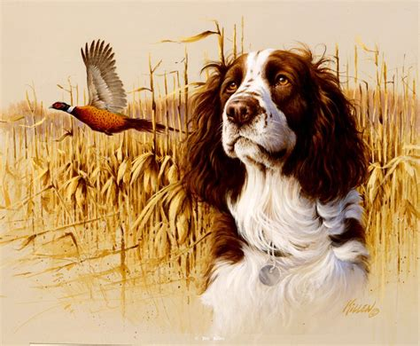 jim killen поиск в google pheasant hunting pinterest