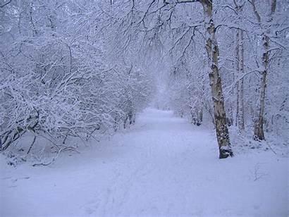 Winter Scenes Desktop Wallpapers