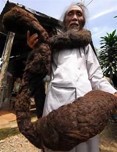 Longest hair in the world NAIJA.NG