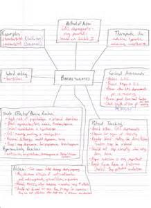 Nursing Concept Map Template
