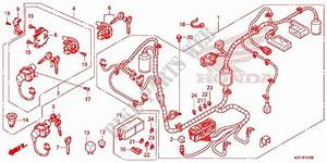Wire Harness  Battery For Honda Sh 125 Abs Standard 2013