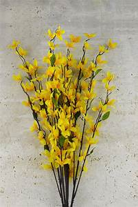 Forsythia Bush Yellow 27in