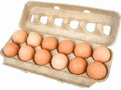 Carton Eggs Egg Cost Using Living 1900
