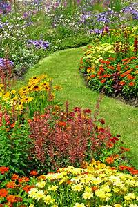 20, Best, Yard, Landscaping, Ideas, For, Front, And, Backyard