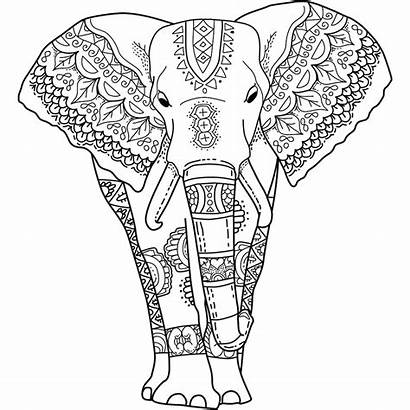 Elephant Coloring Pages Adults India