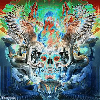 Psychedelic Skull Snake Animated Trippy Painting Jones