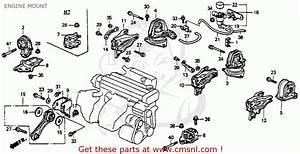 Info Car And Manual  Honda Civic Fd Service Manual Pdf