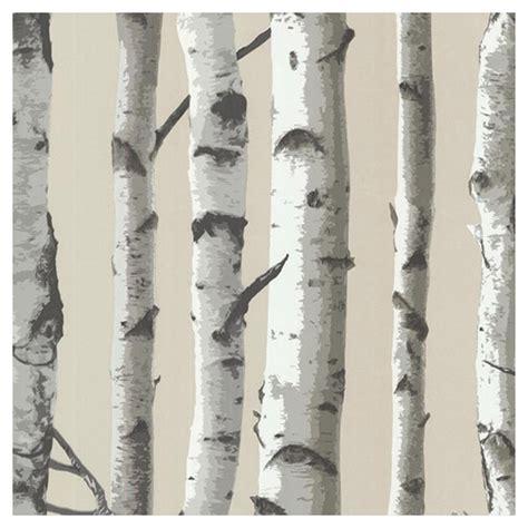 papier peint motif de bouleaux 20 quot x 33 gris blanc rona