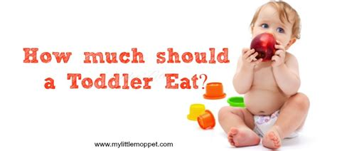 How Much Should A Toddler Eat?  My Little Moppet