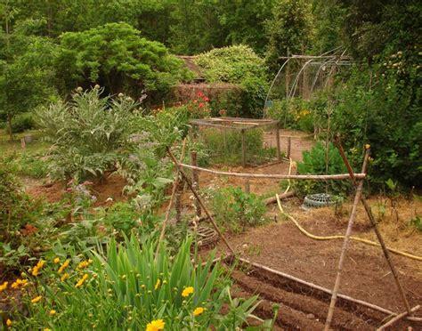 how to design a potager garden gardening how