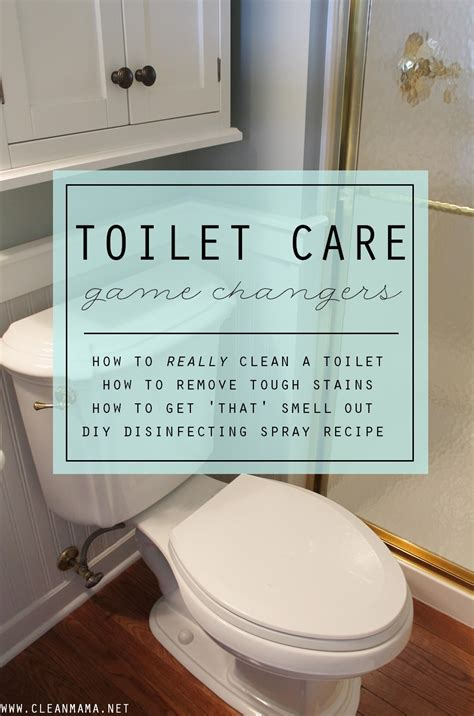 How To Get Bathroom On Office by Toilet Care Changers Clean