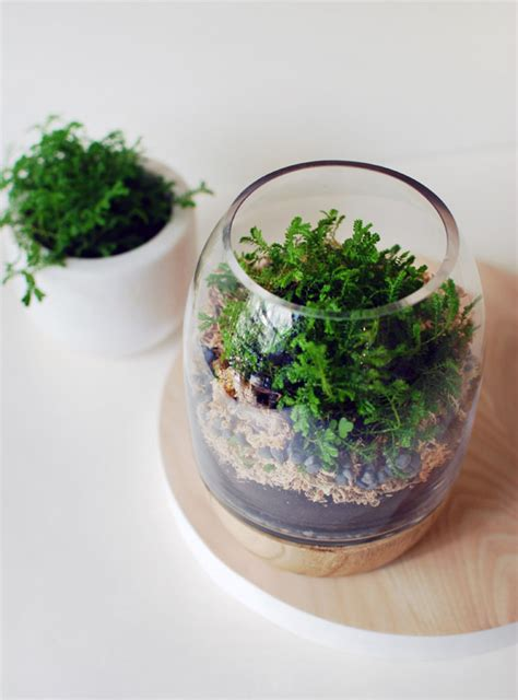 bathroom wall decorating ideas how to terrarium 18 great diy ideas style motivation