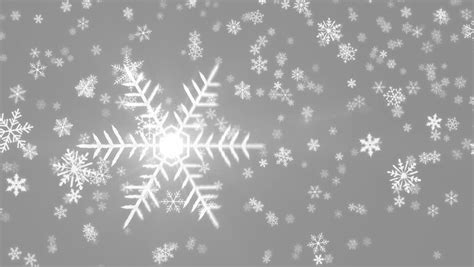 Gray Snowflake Background by Grey Colorful Abstract Snowing Motion Background