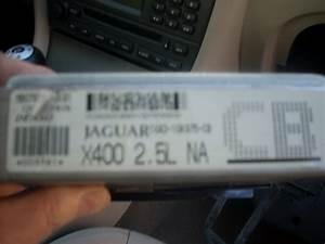 2004 Jaguar Xj8 Problems  Jaguar  Wiring Diagram Images