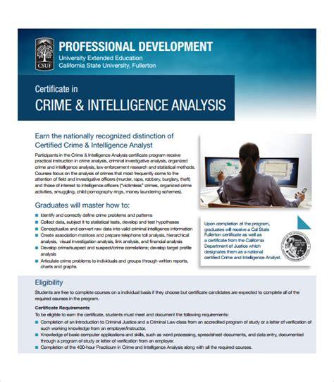 sample certificate  analysis templates