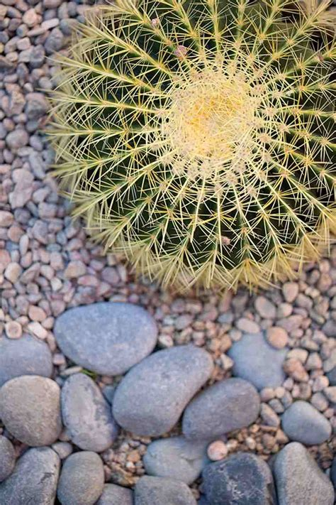 Decoration De Jardin Design D 233 Coration De Jardin En En 35 Id 233 Es Sympas