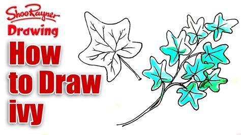 draw ivy youtube