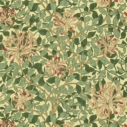 Morris William Wallpapers Honeysuckle Coral Compendium Ii