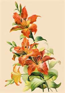 Vintage Tiger Lily Flowers