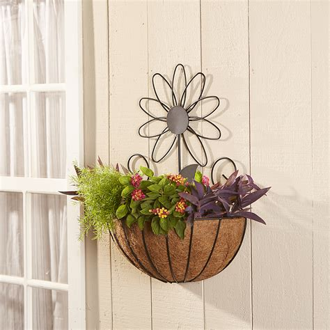 hanging wall garden essential garden wall hanging coco planter limited