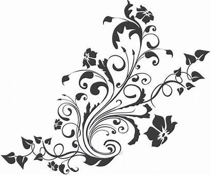 Floral Pattern Patterns Swirl Flower Designs Border