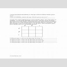 Abo Blood Types Worksheet 7th  12th Grade Worksheet  Lesson Planet
