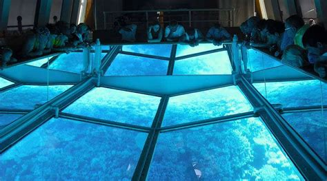Glass Bottom Boat Egypt by Hurghada Glass Bottom Boat Tour Itinerary Prices Booking