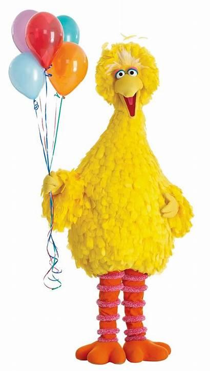 Bird Birthday Sesame Street Wishes Happy Party