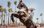 Old Spanish Days Fiesta Santa Barbara | Brighten Solar Co.
