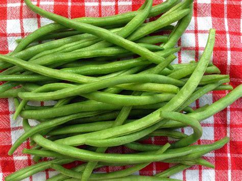 comment cuisiner les feves surgel馥s comment cuisiner les haricots verts 28 images comment