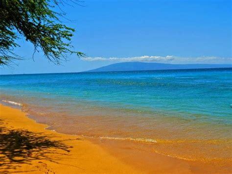 maui hawaii beach restaurants tripadvisor hi travel kihei tourism hawaiian south vacation days lahaina kai honua bamboo forest farmer market