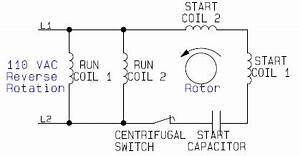 Accessories Operate Figure Volt Circuits