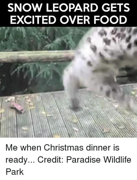 Snow Memes Snow Memes Of 2017 On Sizzle Best Meme