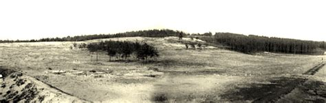 zolynia memorial aftermath