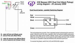Gw Custom Basses And Lutherie - Instruments