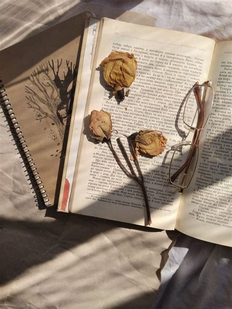 pin by anya layman on book aesthetic
