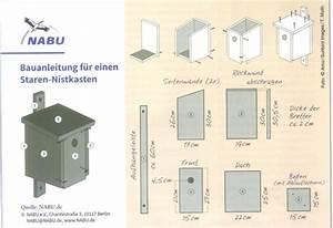 Vogelhaus Bauen Nabu : vogelhaus selber bauen anleitung nabu ostseesuche com ~ Buech-reservation.com Haus und Dekorationen